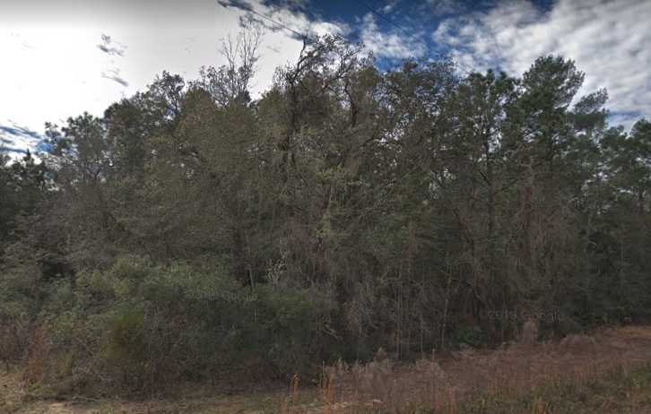 0.22 acres Lot in Interlachen, FL. APN# 25-09-24-4075-0660-0360 Street view of the property