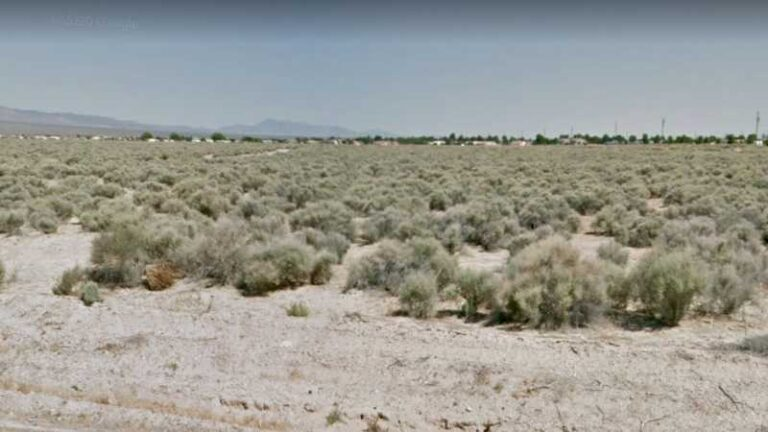 0.2 Acre Lot in Pahrump, NV. APN#040-061-04 Street view of the property