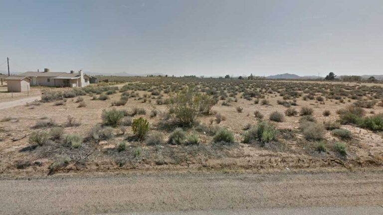 0.73 Acre Lot in Hinkley, CA. APN#0494-201-29 Street view of the property