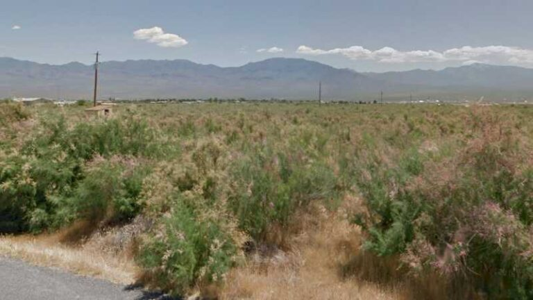 0.93 acres Lot in Pahrump, NV. APN# 041-582-05 Street view of the property