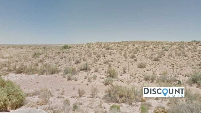 1.32 acres Lot in Holbrook, AZ. APN# 105-59-248 Street view of the property