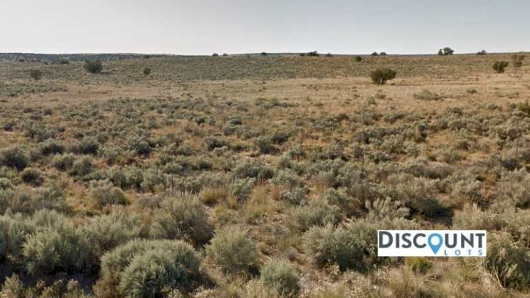 1.01 acres Lot in Chambers , AZ. APN# 207-61-345 Street view of the property