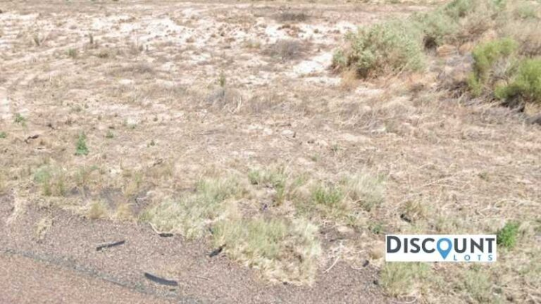 1.14 acres Lot in Chambers, AZ. APN# 207-27-047 Street view of the property