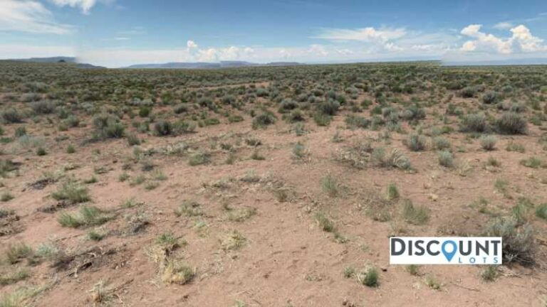 35.1 acres Lot in Alamosa, CO. APN# 541719101014 Street view of the property