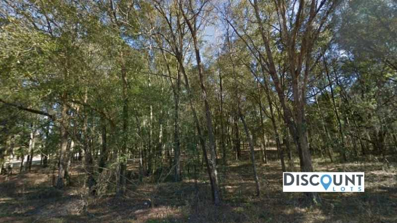 0.24 acres Lot in Dunnellon, FL. APN# 1814-021-015 Street view of the property