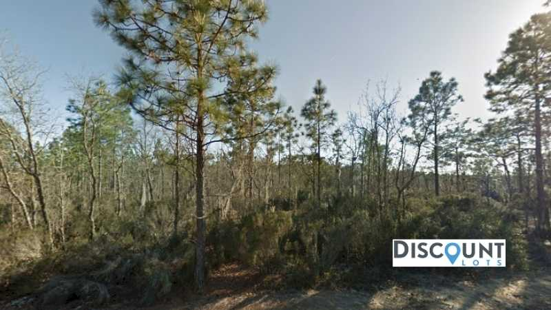 0.10 acres Lot in Interlachen,FL. APN# 05-10-24-4928-0040-0010 Street view of the property