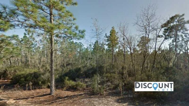 0.10 acres Lot in Interlachen,FL. APN# 05-10-24-4928-0040-0020 Street view of the property