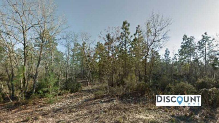 0.10 acre Lot in Interlachen, FL. APN# 05-10-24-4928-0040-0030 Street view of the property