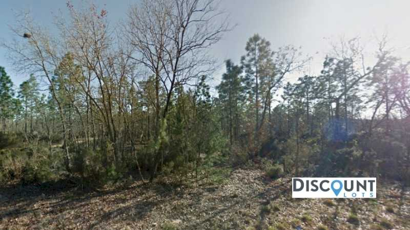 0.10 acres Lot in INTERLACHEN,FL. APN# 05-10-24-4928-0040-0040 Street view of the property