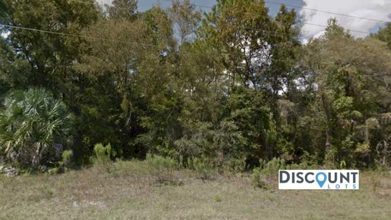 0.25 acres Lot in Dunnellon,FL. APN# 06870-055-00 Street view of the property