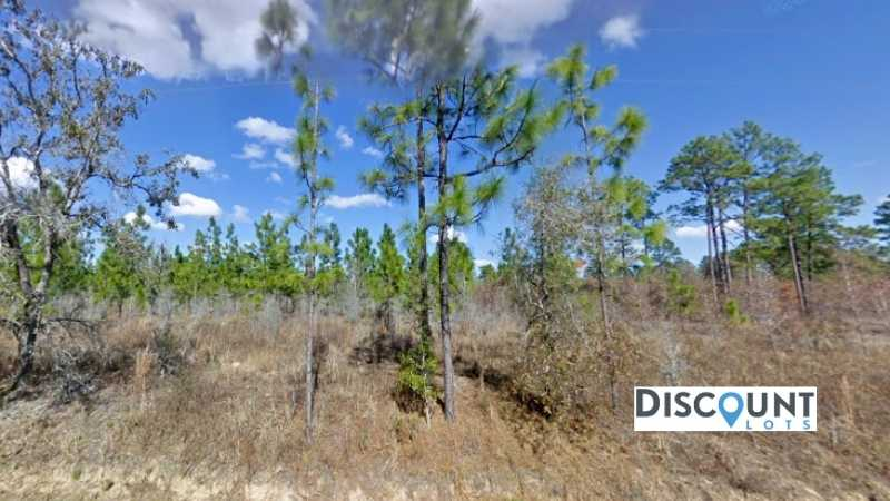 0.25 acres Lot in Dunnellon,FL. APN# 06895-049-00 Street view of the property