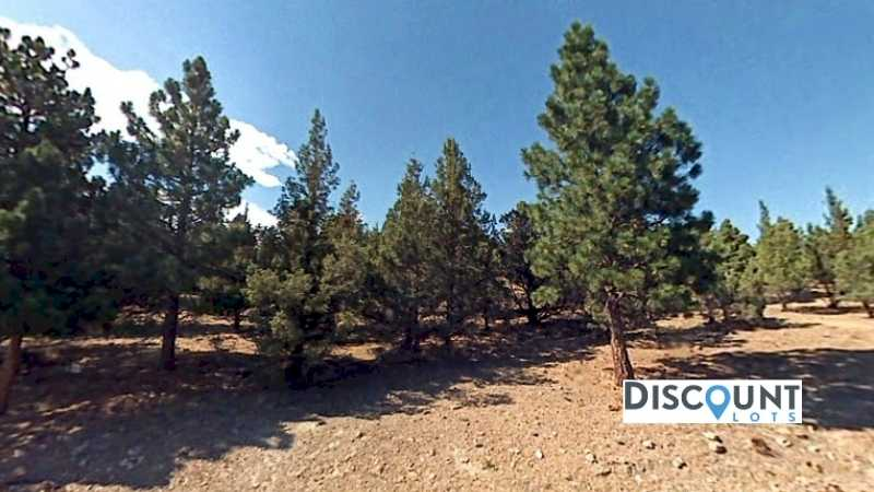 0.35 acres Lot in Weed,CA. APN# 107-120-210 Street view of the property