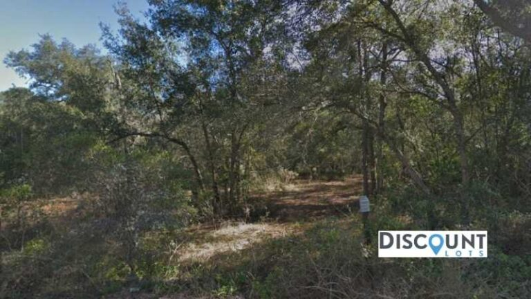 0.69 acres Lot in Keystone Heights,FL. APN# 16-08-23-004381-000-00 Street view of the property