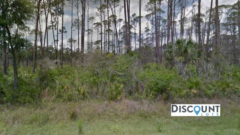 0.29 acres Lot in Altoona,FL. APN# 17-17-27-0002-000-00600 Street view of the property